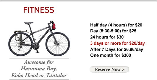 bike-rental-fitness