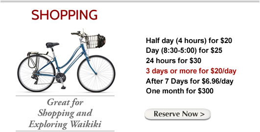 bike-rental-shopping