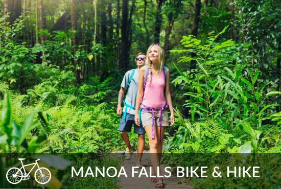 Manoa Falls Bike & Hike