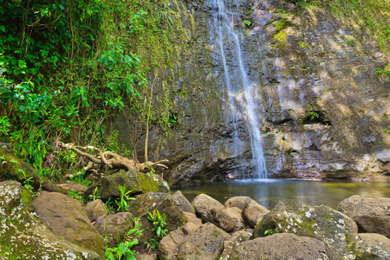 HIKE-TO-MANOA-FALLS-A-BEAUTIFUL-HAWAIIAN-WATERFALL
