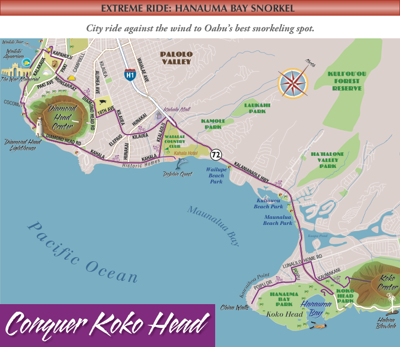 Extreme Ride Hanauma Hawaii Bike Rental Beach Cruisers Comfort